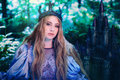 Princess In Magic Forest Royalty Free Stock Photography - 75941067
