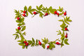 The Square Frame With Leaves And Red Flowers, Berries.Flat Lay. Stock Photos - 75963303
