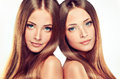 Double Portrait Of Gorgeous Twins With Ong Shiny Healthy Hair.. Royalty Free Stock Photography - 75997477