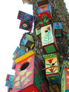 Colours Bird Boxes Stock Images - 762274