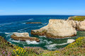 Santa Cruz Shark Fin Cove With Flower Stock Images - 76025754