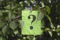 Question Mark Hanging On A Tree Stock Photo - 76044700