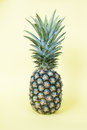 Pineapple Royalty Free Stock Photography - 76131587
