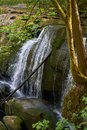 Whatcom Falls Summer Royalty Free Stock Image - 76134746