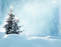 Christmas Winter Background With Fir Tree Royalty Free Stock Photography - 76138117