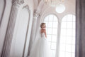 Charming Young Bride In Luxurious Wedding Dress. Pretty Girl, The Photo Studio Royalty Free Stock Photography - 76140757