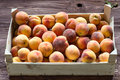 Fresh Peaches In Wooden Box Stock Photos - 76194273