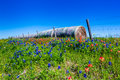 A Meadow With Round Hay Bales And Fresh Texas Wildflowers Stock Photo - 76215450