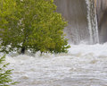 A Tree Is Trying To Keep Standing In Flood Waters Royalty Free Stock Images - 76256709