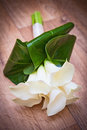 White Calla Lily Wedding Flower Bouquet Stock Photography - 76278512