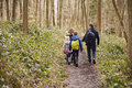 Family Walking Through A Wood, Back View, Mum Turning Round Royalty Free Stock Photography - 76293757