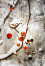 Winter Berry Royalty Free Stock Images - 7635769