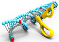 DNA Manipulation Royalty Free Stock Images - 76358639