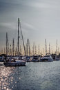 Crowded Masts And Sailing Boats In Point Roberts Marina Royalty Free Stock Images - 76379789