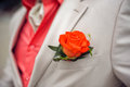 Red Rose Boutonniere Royalty Free Stock Photo - 76432535
