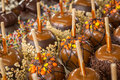 Candied Apples Stock Photography - 76513962