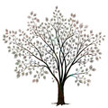 Tree With Leaves Silhouette  On White Vector Royalty Free Stock Images - 76550619