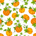 Seamless Pattern With Orange Pumpkins And Green Leaves. Vector Illustration. Stock Images - 76630014