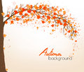 Autumn Abstract Background With Colorful Leaves. Stock Photography - 76632242