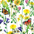 Meadow Watercolor Flowers And Butterfly Seamless Pattern Stock Photos - 76723623