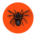 Big Black Spider Scary Insect Halloween Holiday Icon Stock Images - 76822114
