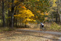 Bicyclist Urban Forest In Michigan Fall Stock Images - 76858634