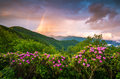Appalachian Mountains Scenic Spring Flowers Landscape Blue Ridge Royalty Free Stock Photo - 76951535