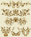 Floral Decorative Patterns In Stiletto Baroque And Royalty Free Stock Image - 7701096
