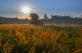 Church On Hill Morning Field Landscape Royalty Free Stock Photography - 77091707