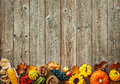 Colorful Background For Halloween And Thanksgiving Stock Images - 77129554
