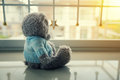 Lonely Teddy Bear Stock Image - 77173031