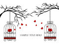Two Lovers Birds In Cages On The Branches Royalty Free Stock Images - 77249969
