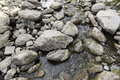 Wet Stones In A River Royalty Free Stock Photos - 77293658