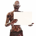 Zombie Undead Holding A Blank Advertisement Sign Card On A Isolated White Background With Room For Text Or Copy Space Stock Photos - 77308623