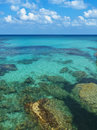 Rocks And Corals Under Turquoise Sea Water Stock Photo - 77356960