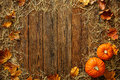 Harvest Or Thanksgiving Background With Gourds And Straw Royalty Free Stock Photos - 77390958