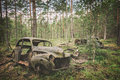Forest Car Cemetery Stock Photography - 77488082