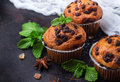Homemade Chocolate Chip Spicy Muffins Cake For Breakfast Stock Photography - 77493402