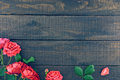 Frame Of Roses On Dark Rustic Wooden Background. Spring Flowers. Royalty Free Stock Photography - 77501187