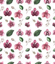 Watercolor Seamless Floral Pattern With Deep Red Orchid Royalty Free Stock Photo - 77619145