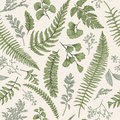 Seamless Floral Pattern With Herbs And Leaves. Stock Photo - 77666640