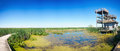 Point Pelee Lookout Panoramic Stock Photos - 77676763