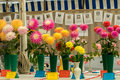 Flowers At A Local Village Show Stock Photos - 77773243