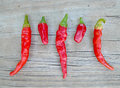 Cayenne And Chili Pequin Peppers Royalty Free Stock Images - 77814979
