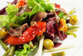 Salad With Anchovy Stock Photo - 7800780