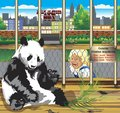 Warning From The Panda In A Cage. Stock Photography - 78081182