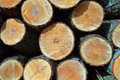 Wood Stock Images - 7819384