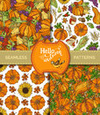 Vector Set Of Seamless Harvest Patterns. Royalty Free Stock Photography - 78104657