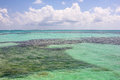 Dry Tortugas Tropical Sea Royalty Free Stock Photography - 78113617