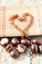 Old Photo Album With Amber Necklace Heart Stock Images - 78144484